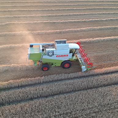 Getreideernte von Agrarservice Meyer