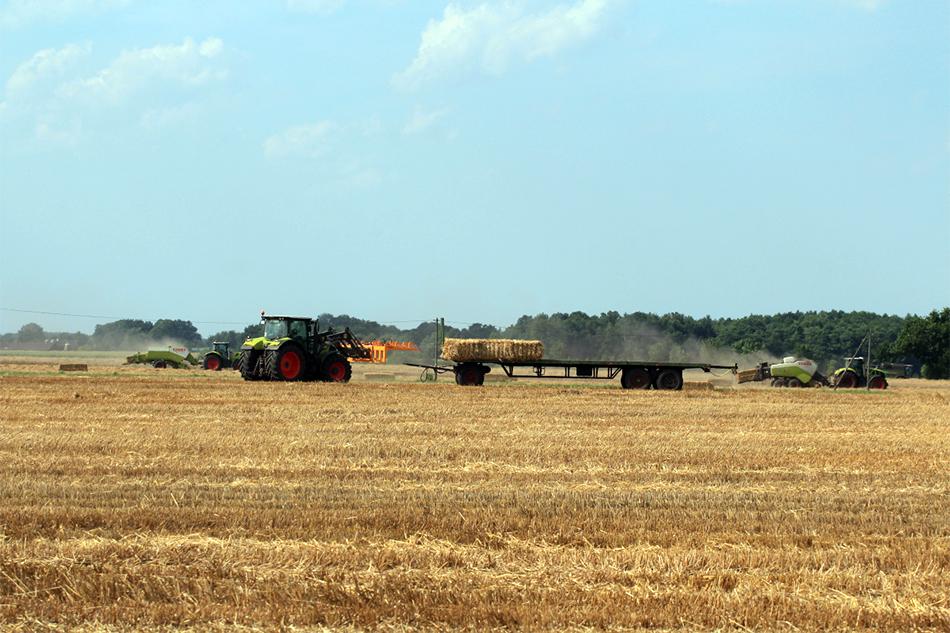 Strohtransport von Agrarservice Meyer