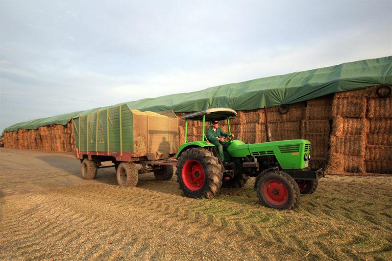 Schüttguttransport von Agrarservice Meyer
