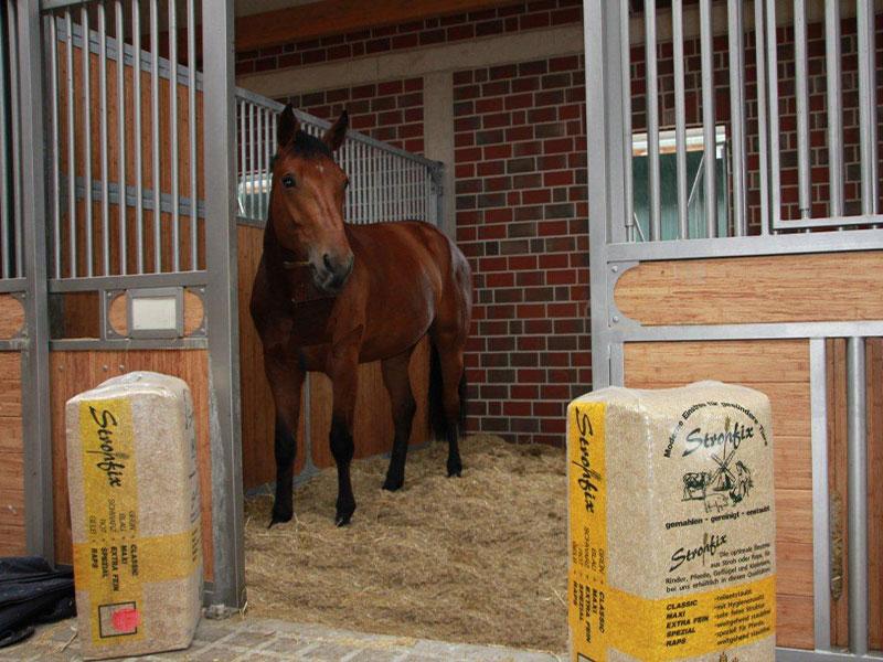 Strohfix für Pferde